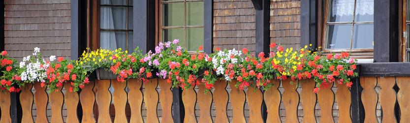 Holzbalkon mit Blumenkästen